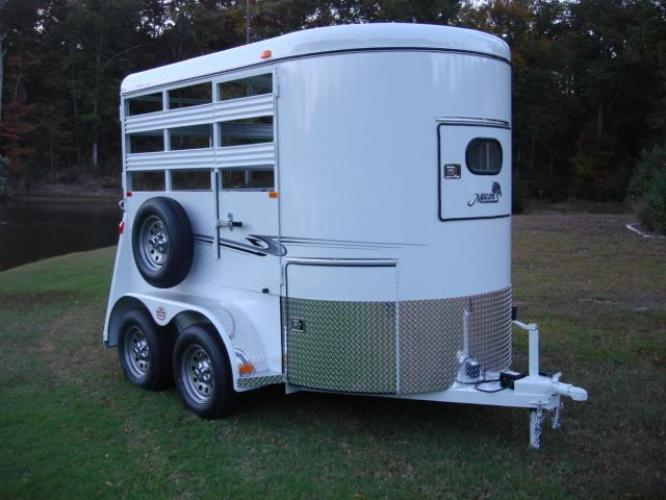 2020 White Bee Trailers 2 Horse Straight Load Wrangler , located at 1330 Rainey Rd., Macon, GA, 31220, (478) 960-1044, 32.845638, -83.778687 - Photo #10